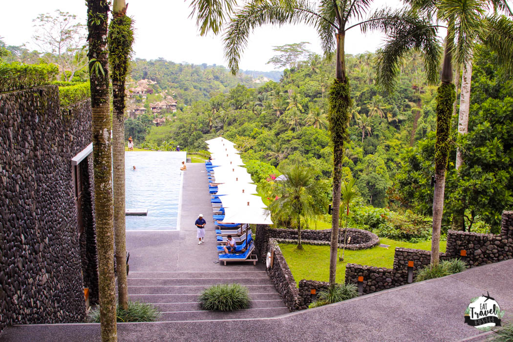 infinity pool at alila ubud