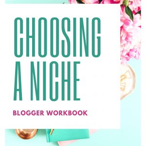 Choosing a Niche eBook